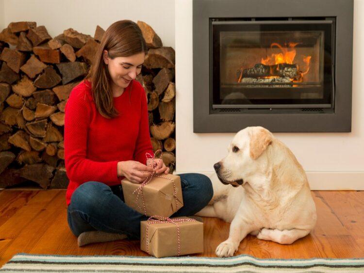 Køb billige gaver som din elskede hund vil elske